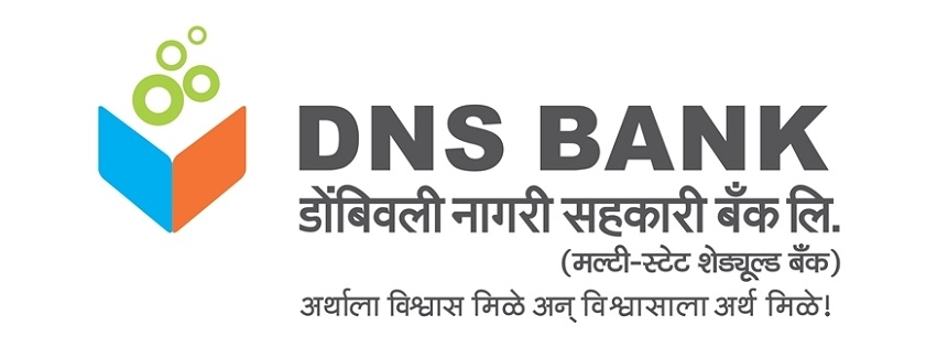 Image result for dns bank logo